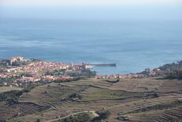 Colliourre