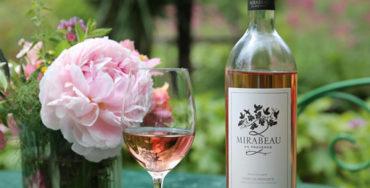 Mirabeau Classic best buy