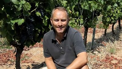 mirabeau-wine-introduction